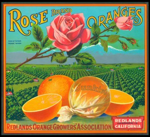 apts california: oranges